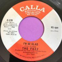 Fuzz-I'm so glad-Calla E