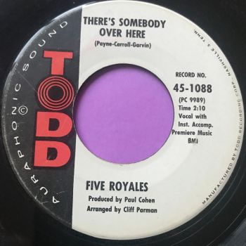 Five Royales-There's somebody over here-Todd vg+