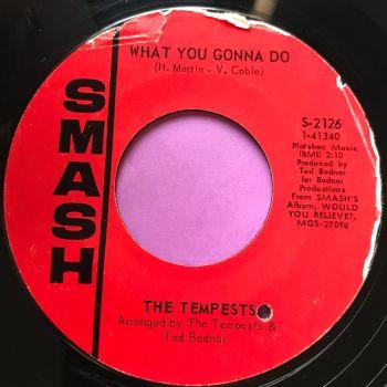 Tempests-What you gonna do-Smash E