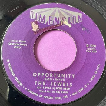 Jewels-Gotta find a way/ Opportunity-Dimension E