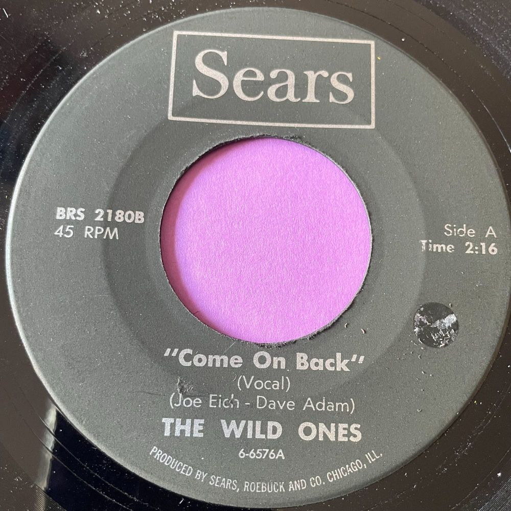 Wild Ones-Come on back-Sears vg+