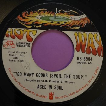 Aged of Soul-Too many cooks spoil the soup-Hot Wax E+