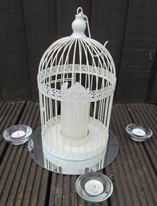 bird cage palin