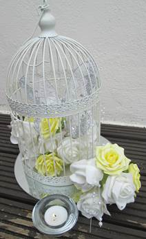 bird cage yellow