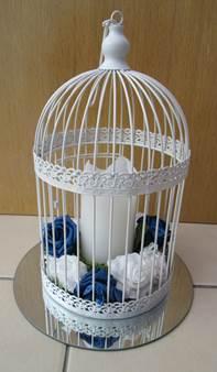 bird cage blue