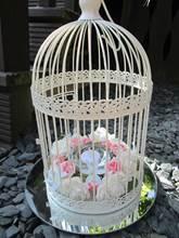 Bird cage pink/blue