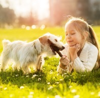 Dog and Child Safety Talks and Information in Surrey, West Sussex and Hampshire
