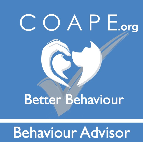 COAPE Behaviour Advisor