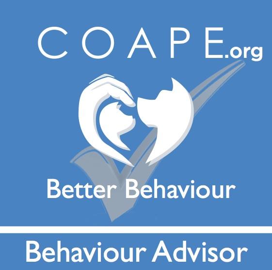 COAPE Behaviour Advisor