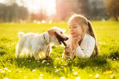 Dog & Child Safety in Surrey, West Sussex and Hampshire