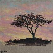 warm evening tree