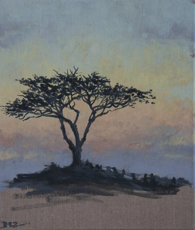 quiet evening tree