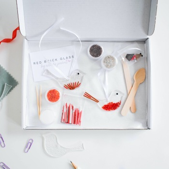 Fused Glass Kit - Robins