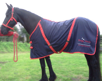 Personalised Horse Rugs from Raggy Horse Equestrian