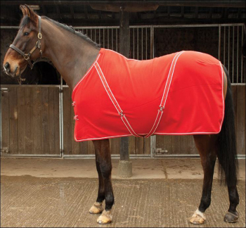 Personalised 'Comfey' Fleece Rug inc embroidery. Navy or Red.