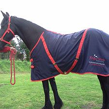 Personalised Horse and Pony Rugs and Sheets