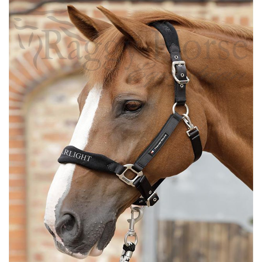 Premier Equine Personalised Head Collar inc embroidery. 5 colours.  Cob or