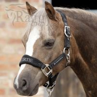 Premier Equine Personalised Pony Head Collar. Restyled for 2019.  3 colours