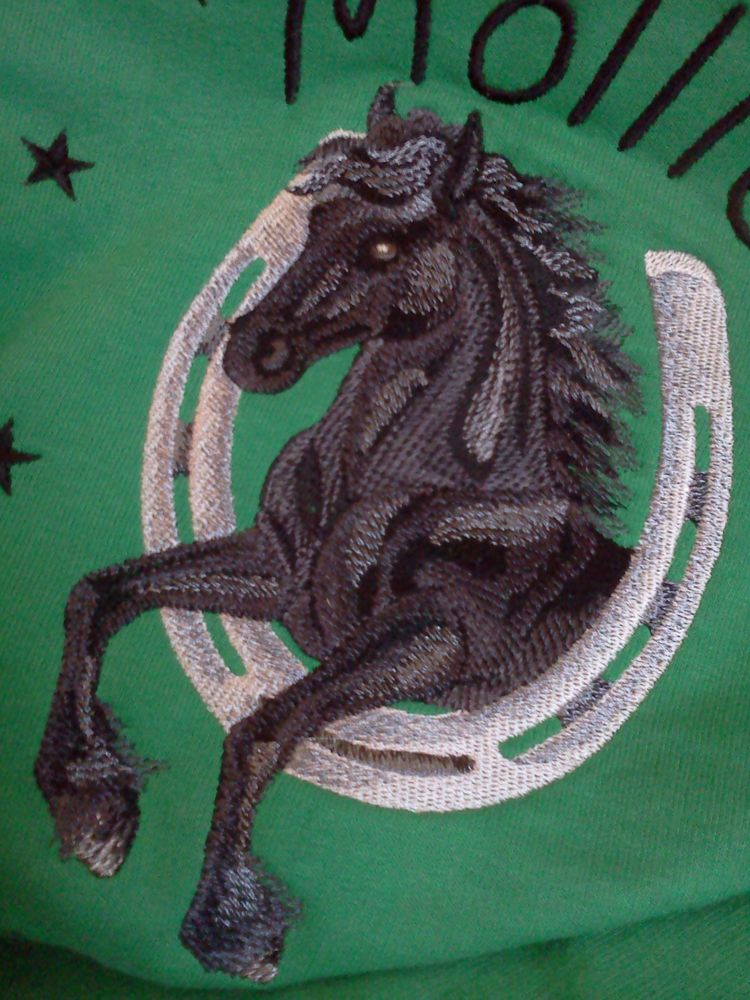 Hoodie with non-standard library Friesian horse design