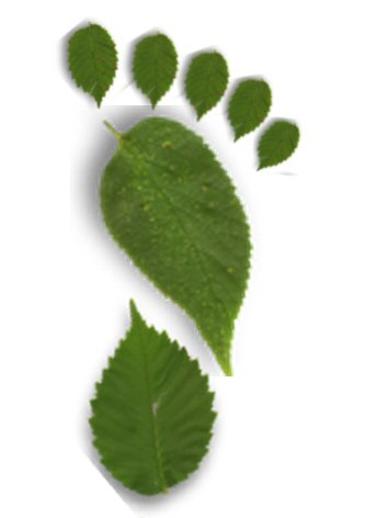 Green footprint with leaves