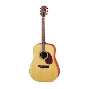 Corth Earth 200 Acoustic guitar