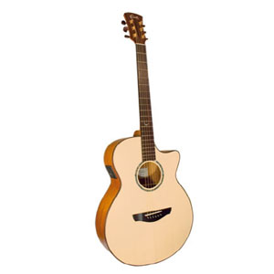 Faith Venus Hi Gloss EQ cutaway Acoustic Guitar (All solid with case) EX DEMO