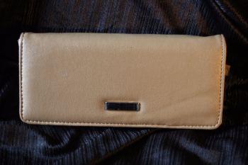 Light Brown Multi-compartment purse