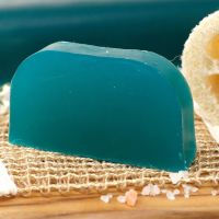 TEA TREE AND PEPPERMINT SOLID SHAMPOO