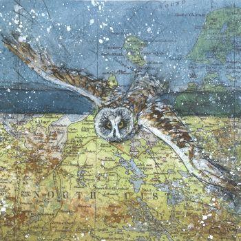 SHORT EARED OWL, NORTH UIST