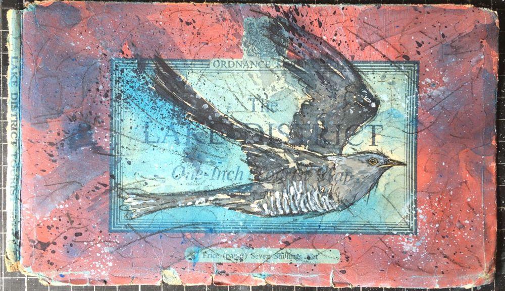 Lake District Cuckoo