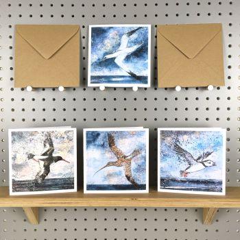 BIRD /MAP GREETINGS CARDS