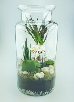 Floristry - Terrariums