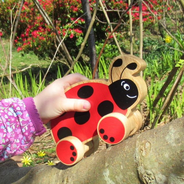 Ladybird push along
