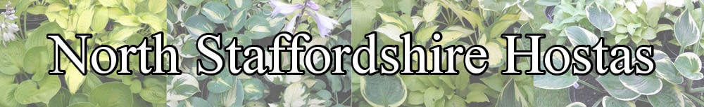 www.northstaffordshirehostas.co.uk, site logo.
