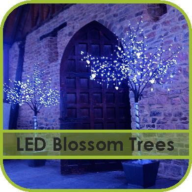 LED Blossom Tree Hire