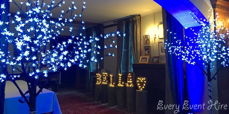 LED Blossom Trees Chavenage House