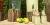 Rustic Lemonade Stand