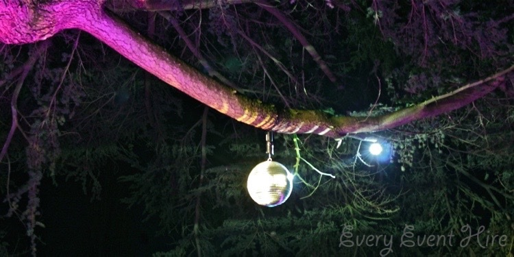 Mirror Ball in Tree at Elmore Court
