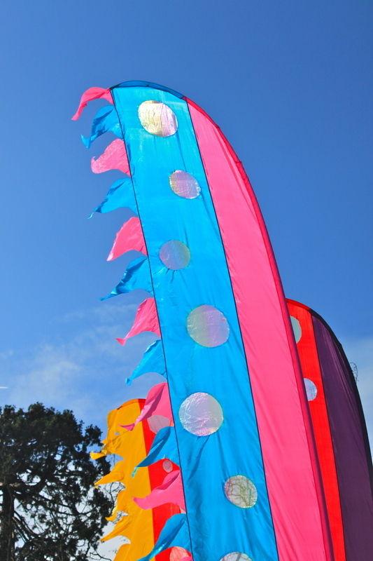 coloured flag hire