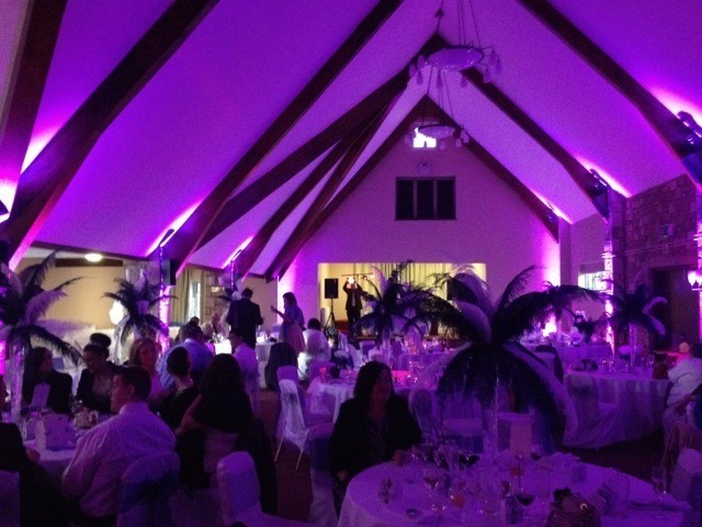 The Frogmill Venue Lighting 1