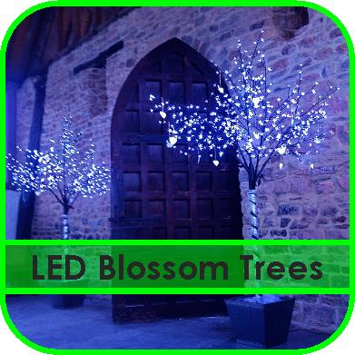 LED Blossom Trees Gloucestershire