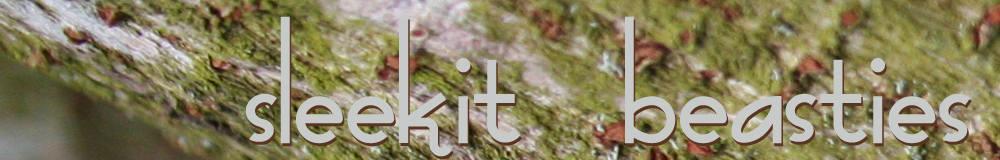 Sleekit Beasties Silver Jewellery Design, site logo.