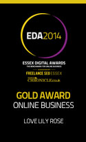 Essex Digital Awards Gold Online Business