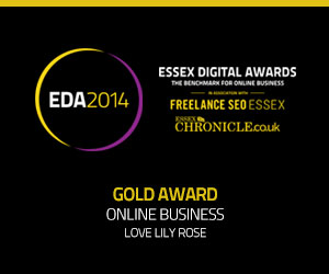 Essex Digital Awards 2014 Gold Award