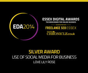Essex Digital Awards 2014 Silver