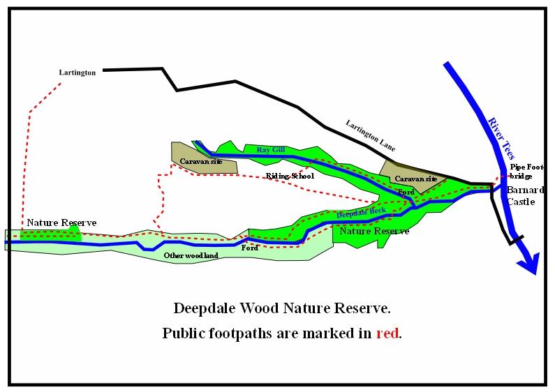 deepdale map 2016