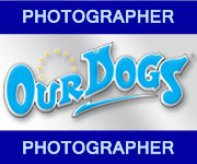 ourdogsphoto