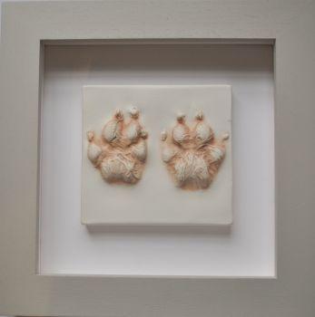 Dog paw impressions framed