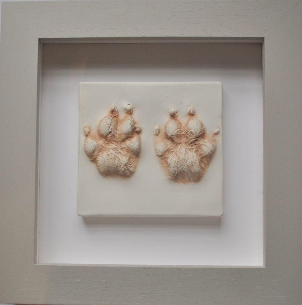 Dog paw impression framed