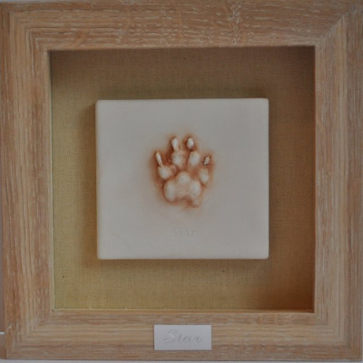 Pet paw Impression framed